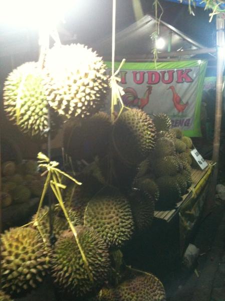 berburu durian 1